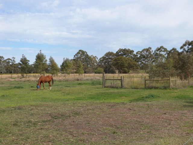 Horse property management