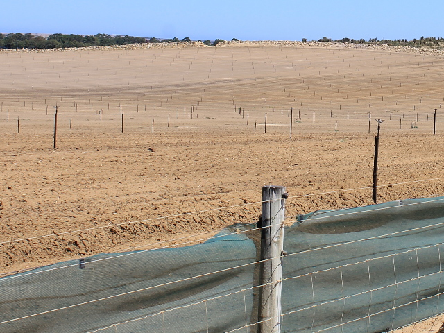 Wind erosion risk is increased on exposed soil