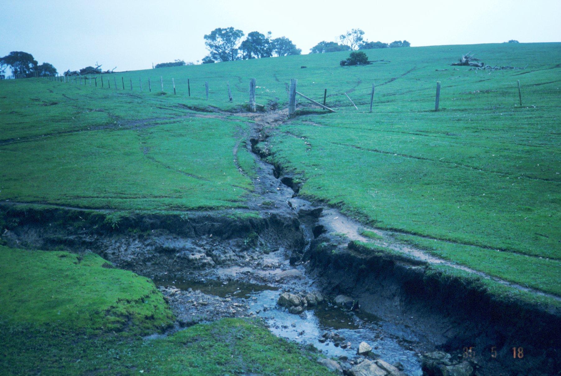 Water erosion of paddock